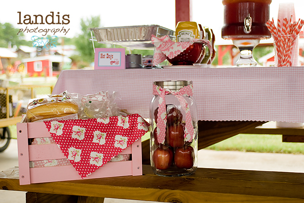 Pink Gingham Tablecloth, Hot Dog Buffet, Pink Lemonade and Sweet Tea in Beverage Canisters, Popcorn and PB&J in Galvanized and Fabric Lined Buckets, Custom Bottle Water Labels
