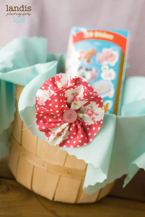 Aqua Basket Liner, Apple Basket Bucket, DIY Red Tanya Whelan Darla in Rosie Flower Rosette Hairclip Button