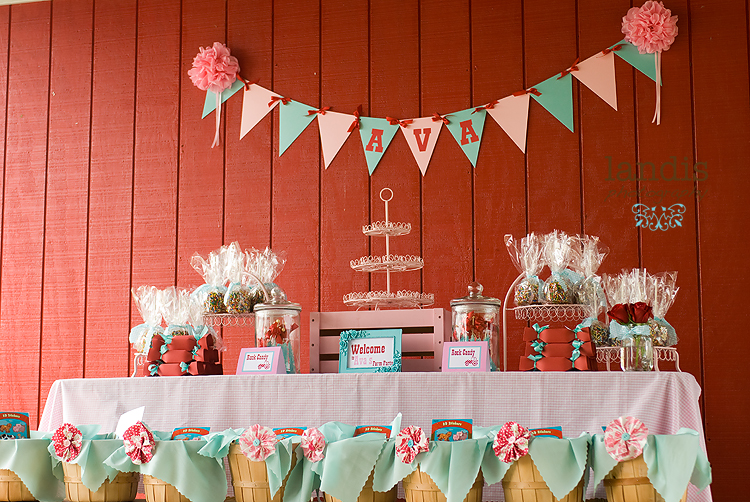 Aqua Red Pink Dessert Table with Fabric Lined Apple Basket and Rosette Hair Clip Favors with DIY Caramel Apples, Pink Cupcake Stand, Silly Band Candy Box, Aqua Rock Candy, Paper Bunting